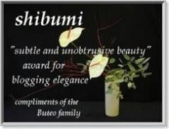 Shibumi Award